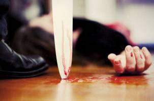 За кровавое убийство женщины смолянин проведет в колонии шесть лет