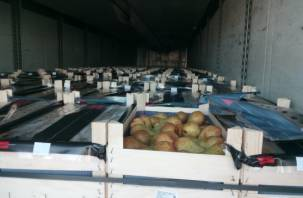 Смоленской таможне пытались выдать польские груши за белорусские яблоки