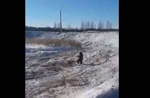 «Под Смоленском траву мы зимою косили»: в Сети появилось видео