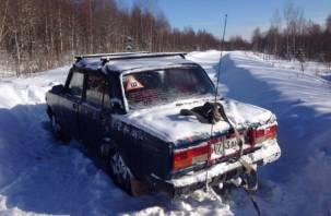 Мужчина залез на дерево, чтобы спасти свою семью от гибели в Смоленской области