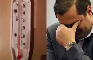 Усилия смоленского губернатора не прошли проверку морозами
