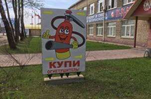 В Смоленске из автомагазинов пропали огнетушители