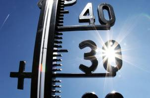 Почти +30: день весны и труда на Смоленщине будет жарким