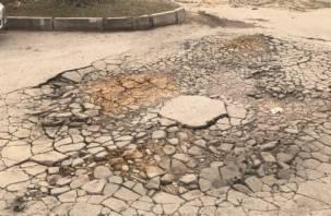 В Смоленске отремонтировали дорогу ветками