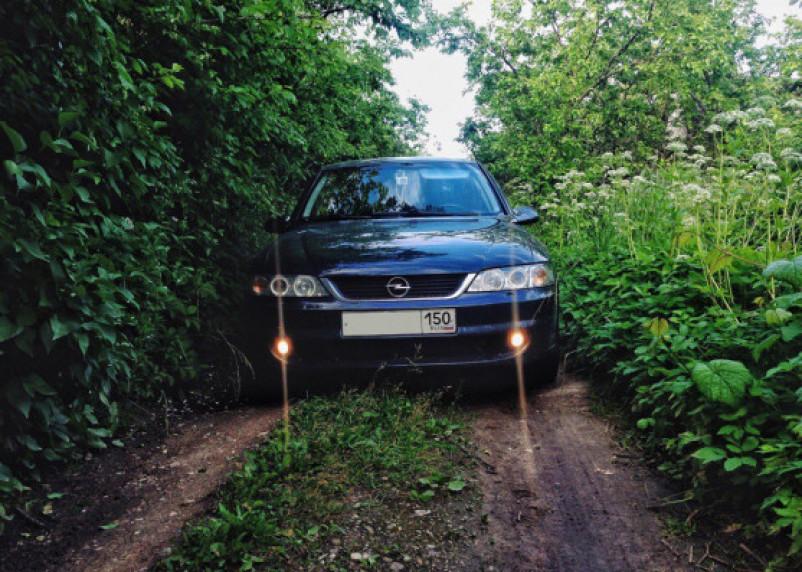 Всё, что нажито непосильным трудом: в Смоленске «вскрыли» авто