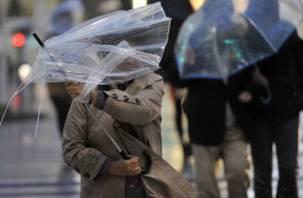 На Смоленщину надвигается потенциально опасный ветер