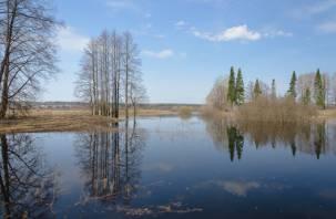 Дорогобужский район Смоленской области уходит под воду