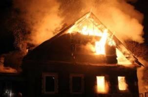 Трагедия при пожаре в Смоленской области приобрела уголовный оттенок