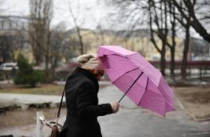 На Смоленщину надвигается стихия: ожидаются сильный ветер и гроза