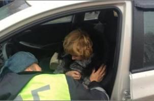В Смоленской области поймали любительницу пьяной езды