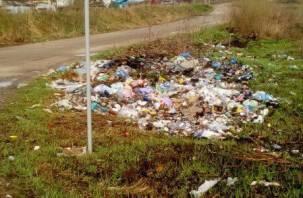 «Сами виноваты»: Жители Рославля по уши заросли в грязи