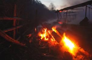 В Смоленске произошел крупный пожар