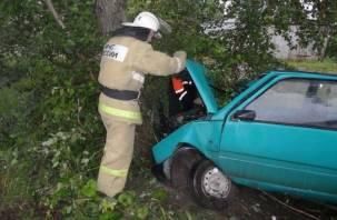«Ока» – в дерево, пассажирка – в больницу: авария едва не унесла жизнь смолянки