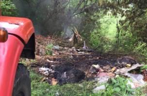 В Смоленске жилые дома едва не загорелись из-за пожара на свалке