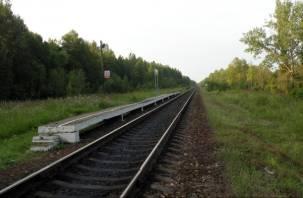«Найден. Погиб» Пропавшего на станции смолянина нашли мертвым