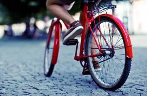 Смоленским велосипедистам могутввести экзамен на знание ПДД