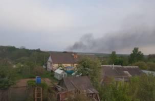 «Лес горит»: смоляне выкладывают фото в Сеть