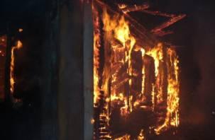 В смоленском поселке Пржевальское заживо сгорел мужчина