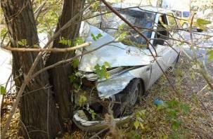 Смолянин протаранил дерево возле дома и покалечил пассажира
