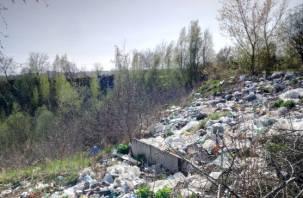 В Смоленске возле ТЭЦ образовалась огромная стихийная свалка