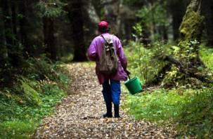 Женщина заблудилась в деревнях Смоленского района