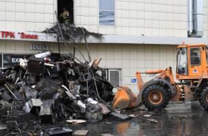 В Кемерове назвали виновниковпожарав «Зимней вишне»