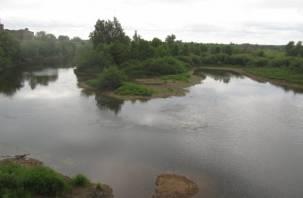 В Смоленской области стремительно мелеет река Вопь