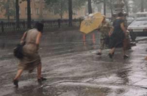 Ливень, град, гроза и сильный ветер: на Смоленщину надвигается непогода