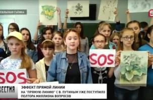Пятый телеканал: «эффект Путина» помог детям в Смоленской области