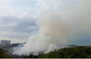 Ущерб экологии на миллионы. Спасатели две недели не могут потушить пожар в вяземском карьере