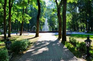 В Гидрометцентре озвучили погоду на июль в Смоленской области