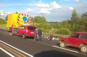 Двое погибли: микроавтобус и грузовик столкнулись на трассе М-1 в Смоленской области