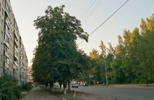 В Смоленске будет проблематично проехать по улице Нормандия-Неман