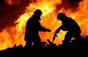 В Смоленской области с начала года в огне погибло полсотни людей