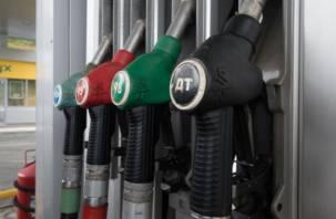 Граждане России назвали виновных в росте цен на бензин