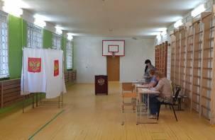 В Смоленской области подвели итоги праймериз партии «Единая Россия»