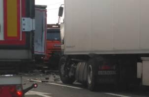 Подробности массовой смертельной аварии в Смоленской области