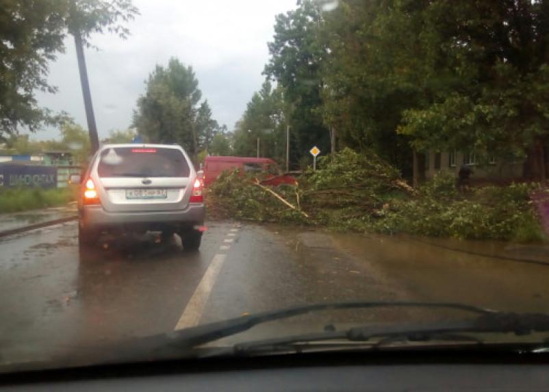 Последствия стихии: Смоленск затопило и завалило деревьями