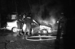 Коротнуло. В Смоленской области огонь уничтожил иномарку