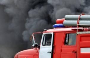 В Смоленской области огонь уничтожил скотобойню