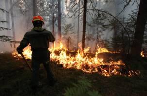 В Смоленске более 30 машин МЧС патрулируют леса