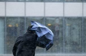 В Смоленске объявлено штормовое предупреждение
