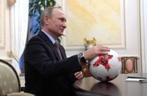 Президент не будет болеть за сборную России во время игры с Хорватией