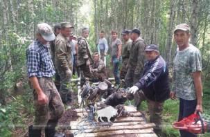 В Белоруссии из болота подняли вылетевший из Смоленской области самолет с телом сержанта