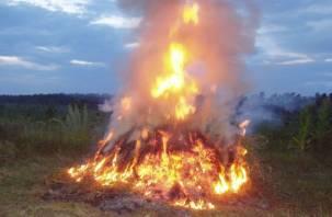 В Смоленской области сгорело большое количество льна