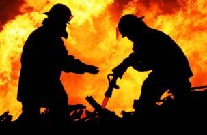 Огонь и дым за полгода унесли жизни 53 смолян