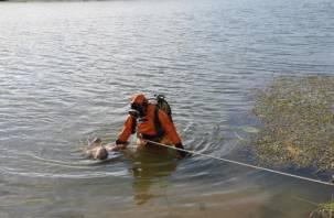 В смоленском водоеме обнаружили тело молодого человека