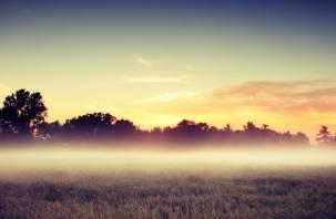Туман и грозы: в Смоленске всё как обычно
