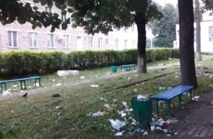 «Стыдно за свой город». Сквер возле автовокзала в Рославле стал помойкой