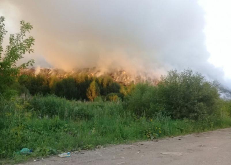 «Пора ЧС объявлять, конец света!»: под Гагариным горит свалка, жители задыхаются